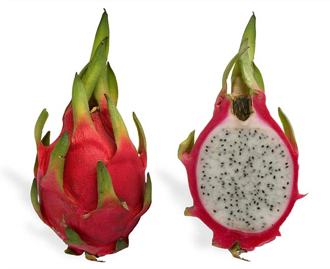 Dragon fruit cutting - White flesh