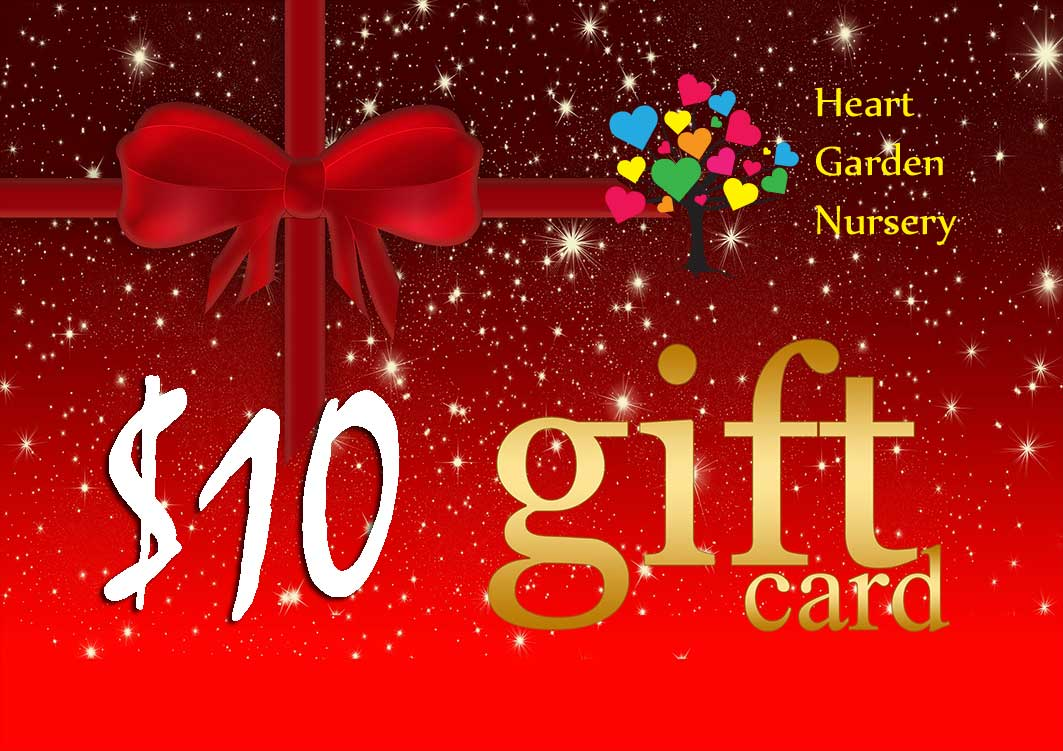 Christmas Gift Card $10 Value