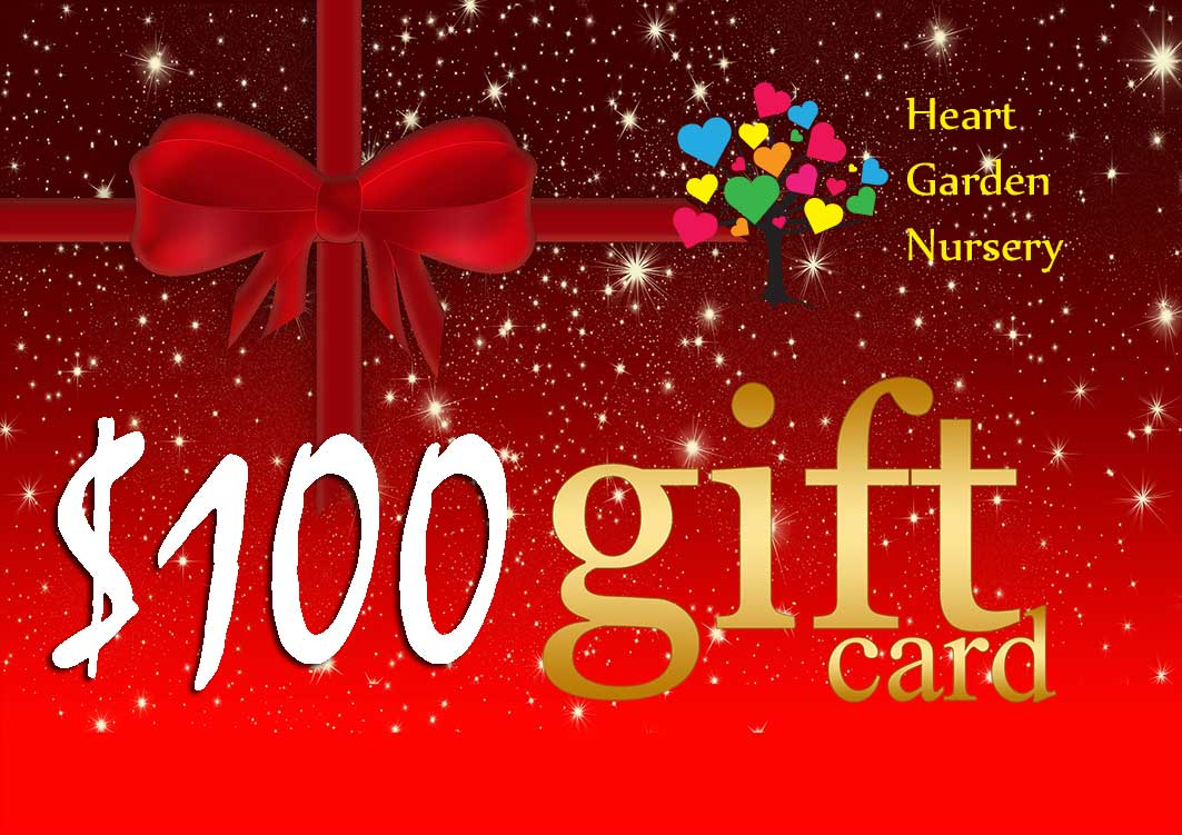 Christmas Gift Card $100 Value